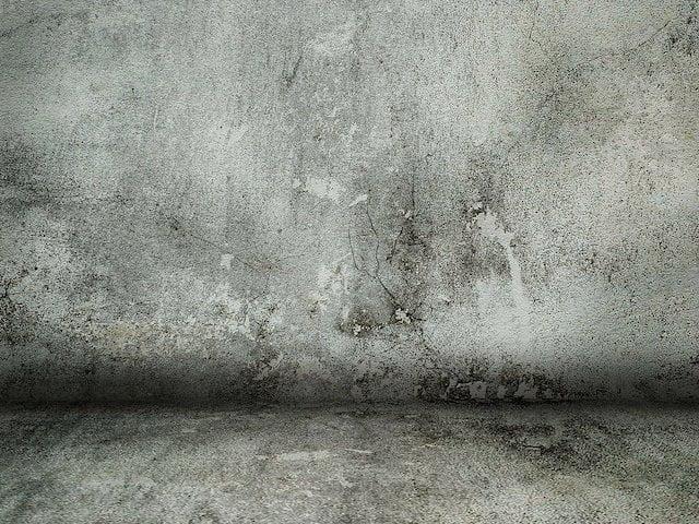 Problemy z wilgocią w domu – co może być ich przyczyną i jakie błędy może wskazać rzeczoznawca budowlany?